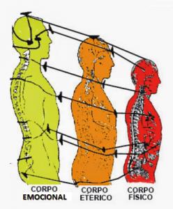 3 CORPOS